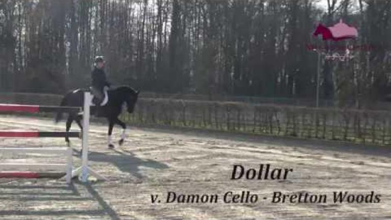 Dollar DSP Wallach v.Damon Cello - Lord Fantastic
