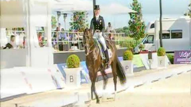 Blanc Pain, Trakehner v. Peron junior - Silvermoon